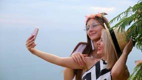 Las muchachas positivas rubias y la morenita hacen imágenes del selfie con la situación del teléfono cerca de árbol verde en  almacen de video