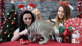 Las muchachas se están divirtiendo con sus animales domésticos en el ambiente del Año Nuevo almacen de video