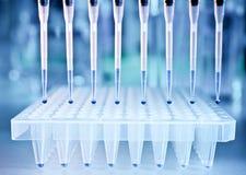 Muestras de la DNA y una placa para el análisis de la polimerización en cadena Fotos de archivo
