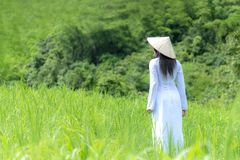 Las mujeres asiáticas con el vestido tradicional de Ao-Dai Vietnam visten caminar de la mujer imágenes de archivo libres de regalías