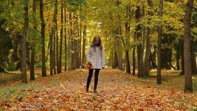 Las mujeres bastante jovenes que vagan en el parque en el otoño que sostiene el ramo de la hoja que da vuelta alrededor de lanzar almacen de metraje de vídeo