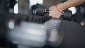 Las mujeres cogen las pesas de gimnasia para los deportes, cierre almacen de metraje de vídeo