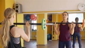 Las mujeres del ajuste se est?n resolviendo con los Barbells en un gimnasio metrajes