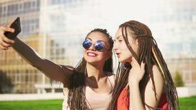 Las mujeres felices con temen el sentarse en hierba en parque del verano y selfies que hablan Amigos jovenes que hablan y que tom metrajes