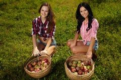 Las mujeres hermosas acercan a cestas de manzanas Foto de archivo