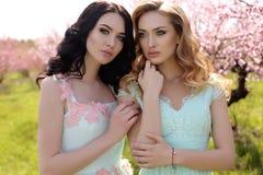 Las mujeres hermosas en los vestidos elegantes que presentan en flor cultivan un huerto Fotografía de archivo libre de regalías