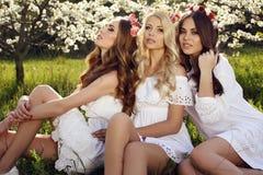Las mujeres sensuales magníficas con el pelo lujoso en el vestido elegante que presenta en flor cultivan un huerto Imágenes de archivo libres de regalías