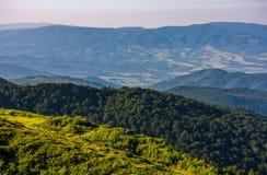 Las na halnym skłonie przeglądać od wierzchołka Zdjęcie Stock