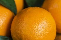 Las naranjas se cierran para arriba Imagenes de archivo