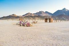 Las naves del desierto Fotos de archivo libres de regalías