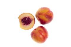 Las nectarinas Foto de archivo libre de regalías