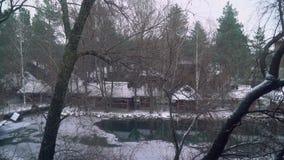 Las nevadas en el lago en el pueblo ucraniano, copos de nieve caen, los árboles crecen alrededor del lago almacen de metraje de vídeo