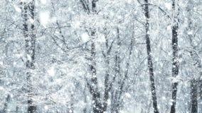 Las nevadas globales grandes adicionales mega colocan invierno del árbol almacen de metraje de vídeo