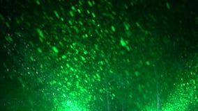Las nevadas pesadas en bosque del invierno destacaron con las luces coloreadas del punto en la noche metrajes
