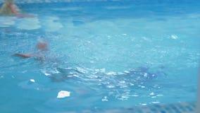 Las niñas nadan en la piscina metrajes