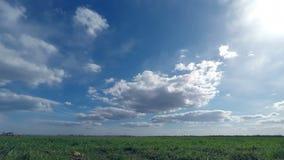 Las nubes barren sobre el campo verde almacen de video