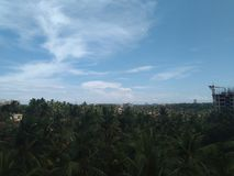 Las nubes de la tarde con una mezcla del verdor con un toque de edificios imagen de archivo libre de regalías