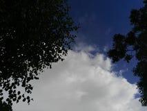 Las nubes del cielo Foto de archivo