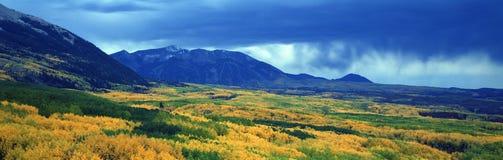 Las nubes del otoño en Kebler pasan, bosque del Estado de Gunnison, Colorado Foto de archivo