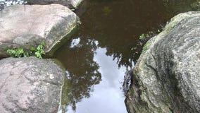 Las nubes en el cielo reflejaron en la charca de un jardín japonés ajardinado en Australia metrajes