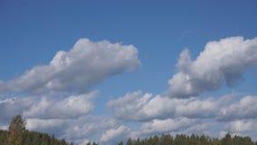 Las nubes flotan a través del parque del cielo, visión desde el pico de montaña sobre las nubes almacen de video
