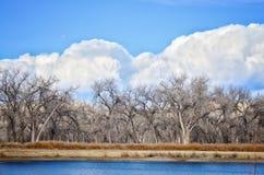 Las nubes siniestras flanquean el bosque del Cottonwood en el parque de estado del pueblo del lago, Colorado Imagen de archivo