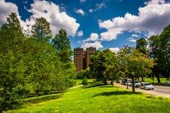 Las nubes sobre árboles y un edificio en la colina del druida parquean, en Baltimor Foto de archivo libre de regalías