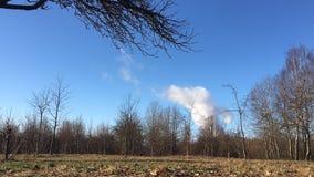 Las nubes video flotan en el cielo sobre el movimiento rápido del bosque almacen de metraje de vídeo