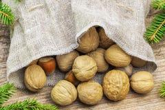 Las nueces con las avellanas en el bolso de lino con el abeto ramifican alrededor Fotos de archivo libres de regalías