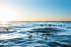 Las ondas azules se cierran para arriba Foto de archivo