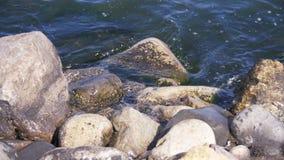 Las ondas batieron contra las rocas en el mar en la cámara lenta metrajes