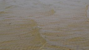 Las ondas en el lago metrajes