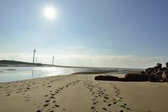 Las ondas estralladas sobre la playa Fotos de archivo libres de regalías