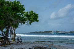 Las ondas grandes de los Maldivas fotos de archivo