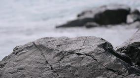 Las ondas que se rompen en la piedra y crean un chapoteo metrajes
