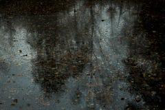las ondulaciones de la naturaleza reflejan en otoño imagen de archivo