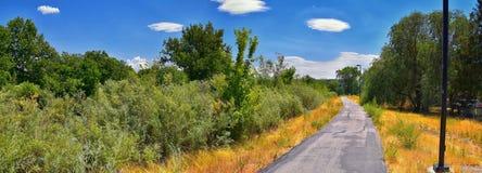 Las opiniones Jordan River Trail con los árboles circundantes, la aceituna rusa, el cottonwood y el légamo llenaron el agua fango fotografía de archivo