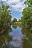 Las opiniones Jordan River Trail con los árboles circundantes, la aceituna rusa, el cottonwood y el légamo llenaron el agua fango fotos de archivo