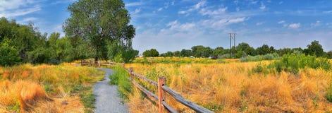 Las opiniones Jordan River Trail con los árboles circundantes, la aceituna rusa, el cottonwood y el légamo llenaron el agua fango fotografía de archivo libre de regalías