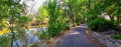 Las opiniones Jordan River Trail con los árboles circundantes, la aceituna rusa, el cottonwood y el légamo llenaron el agua fango foto de archivo libre de regalías