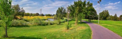 Las opiniones Jordan River Trail con los árboles circundantes, la aceituna rusa, el cottonwood y el légamo llenaron el agua fango fotos de archivo libres de regalías