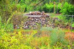 Las opiniones Jordan River Trail con los árboles circundantes, la aceituna rusa, el cottonwood y el légamo llenaron el agua fango imagenes de archivo