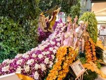 Las orquídeas de Bangkok del modelo de Tailandia Imágenes de archivo libres de regalías