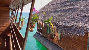Las orquídeas en potes cuelgan en el pórtico de la casa con vistas al mar Oscilación de Orhdeas por el viento cerca del océano Vi almacen de video