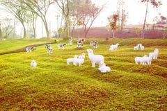 Las ovejas esculpen en hierba Foto de archivo libre de regalías
