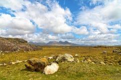 Las ovejas rurales escénicas hermosas del campo ajardinan de connemara fotos de archivo libres de regalías