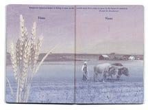 Página en blanco del pasaporte de los E.E.U.U. Fotos de archivo libres de regalías