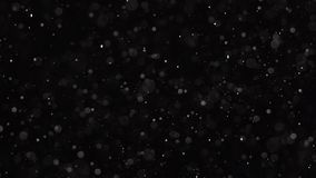 Las párticulas de polvo están rielando en fondo negro C?mara lenta libre illustration