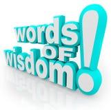 Las palabras de la sabiduría 3d redactan la información del consejo Fotografía de archivo