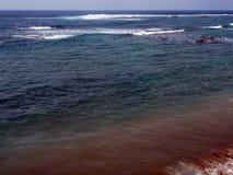 Las Palmas de Gran Canaria, kanariefågelöar Royaltyfri Fotografi